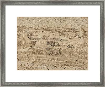 Harvest  The Plain Of La Crau Framed Print