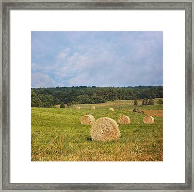 Harvest Time Framed Print by Kim Hojnacki