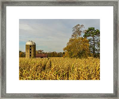 Harvest Time Framed Print by Paul Freidlund
