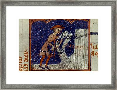 Harvesting, 14th Century Framed Print by Granger