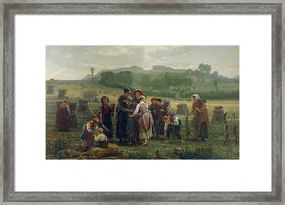Harvesting Poppies In Picardy, 1860 Oil On Canvas Framed Print