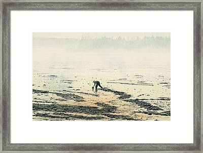 Harvesting The Flats Framed Print by Brent Ander