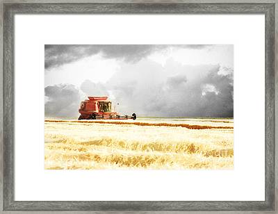 Harvesting The Grain Framed Print