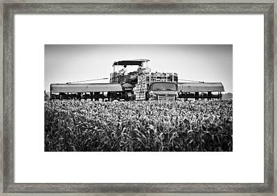 Framed Print featuring the photograph Harvesting Time by Ricky L Jones