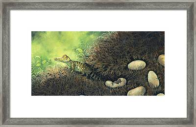 Hatching Day Framed Print