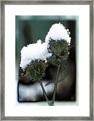 Hats On Framed Print by Gun Legler