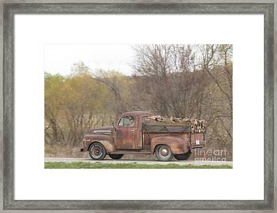 Hauling Wood Framed Print