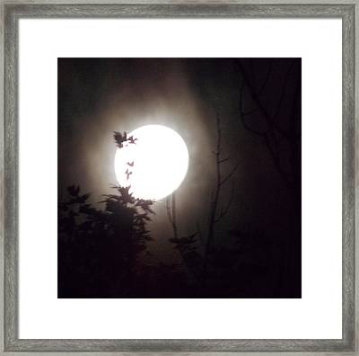 Haunted Night 1 Framed Print