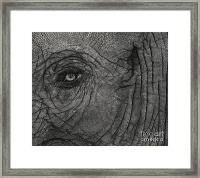 Haunting Eye Framed Print