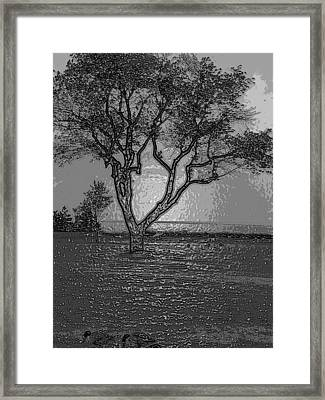 Haunting Framed Print