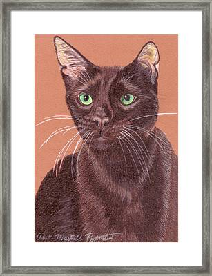 Havana Brown Vignette Framed Print