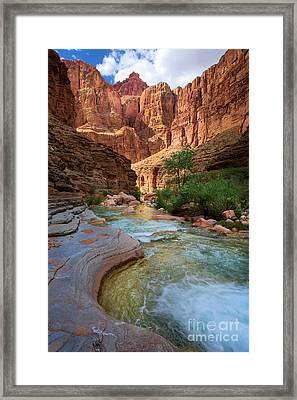 Havasu Creek Framed Print by Inge Johnsson