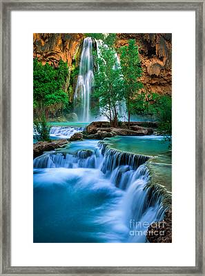 Havasu Paradise Framed Print by Inge Johnsson