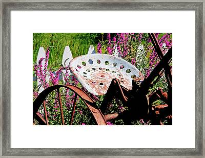 Have A Seat Framed Print by Heather Allen