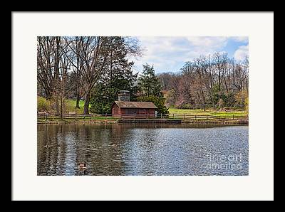 Haverford Duck Pond Framed Prints