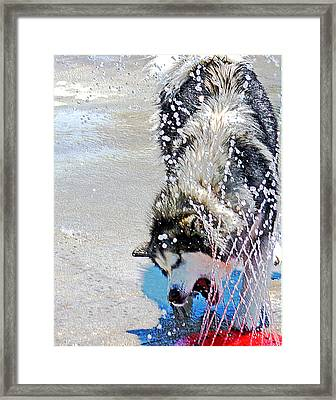 Having Fun Framed Print