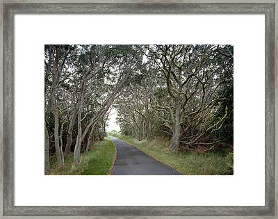 Framed Print featuring the photograph Hawaii, 1998 by Granger