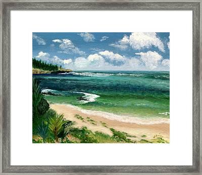 Hawaii Beach Framed Print
