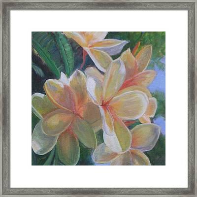 Hawaiian Flowers Framed Print