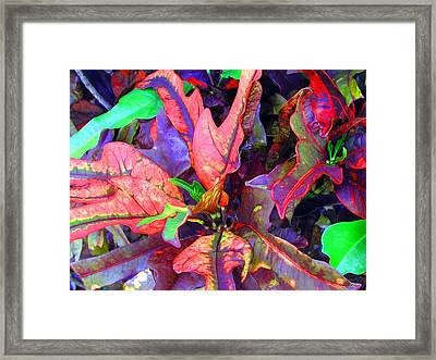 Hawaiian Foliage Framed Print by Jean Hall