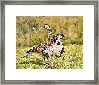 Hawaiian Goose Couple Framed Print