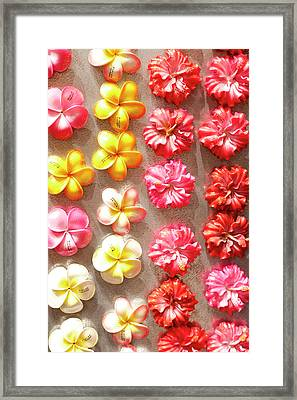 Hawaiian Magnets Display At Market Place Framed Print by Daisy Gilardini