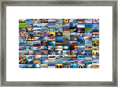 One Hawaiian Mixed Plate Framed Print by Sean Davey