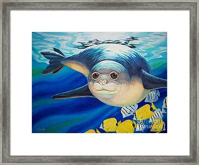 Hawaiian Monk Seal For Noaa Monk Seal Recovery Program Framed Print by Tammy Yee