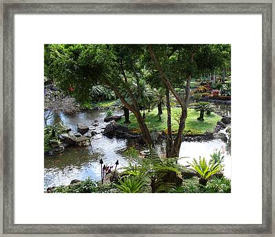 Hawaiian Pond  Framed Print by Dee  Savage