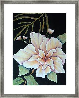 Hawaiian Pua Framed Print by Pamela Allegretto