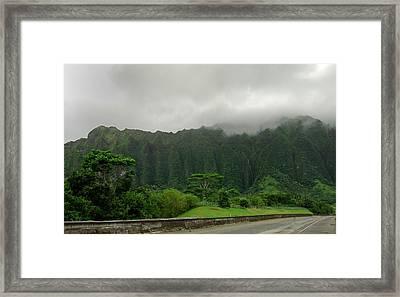 Hawaiian Rain Forest Framed Print