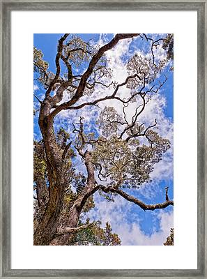 Framed Print featuring the photograph Hawaiian Sky by Jim Thompson