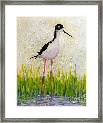 Hawaiian Stilt Framed Print