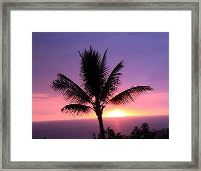 Hawaiian Sunset And Palm Framed Print