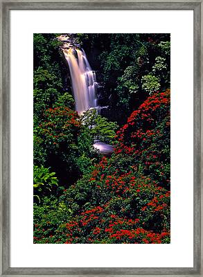 Hawaiian Waterfall With Tulip Trees Framed Print by Marie Hicks