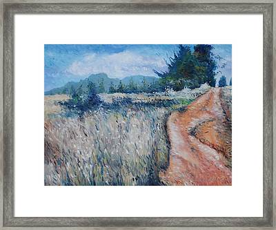 Hawequa Mountains Diemersfontein Cape Town South Africa Framed Print by Enver Larney