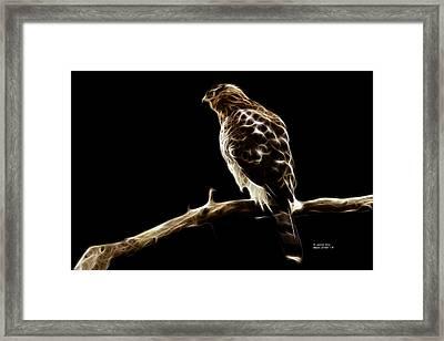 Hawk -  2950 - F Framed Print by James Ahn