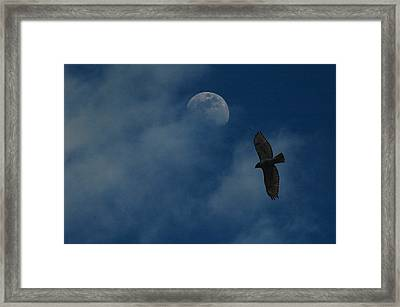 Hawk And Moon Coming Out Of The Mist Framed Print by Raymond Salani III
