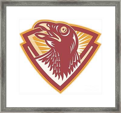 Hawk Head Shield Retro Framed Print by Aloysius Patrimonio