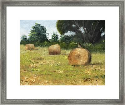 Hawk On Bale Framed Print by Tommy Thompson