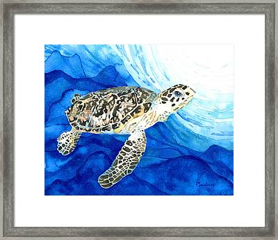 Hawksbill Sea Turtle 2 Framed Print