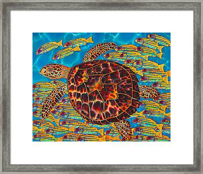 Hawksbill Sea  Turtle And  Snappers Framed Print