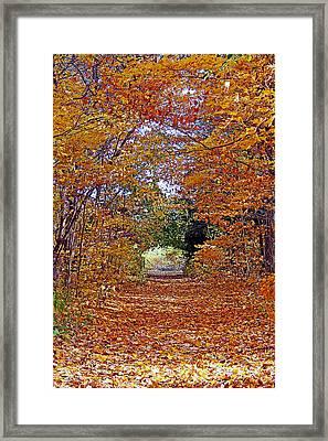 Hawthorn Hollow Framed Print
