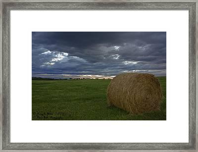 Hay Bail Framed Print
