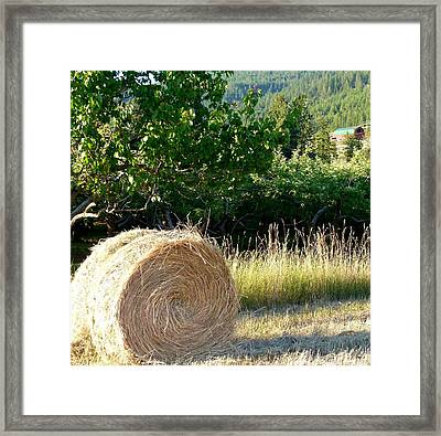 Hay Bale And Barn Framed Print by Will Borden