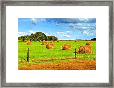 Hay Bale Harvest Framed Print