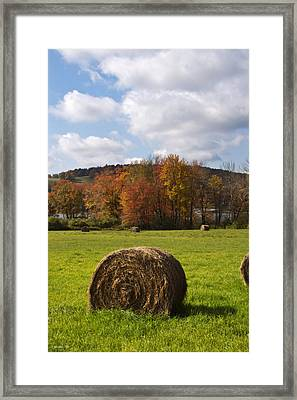 Hay Bale In Country Field Framed Print by Christina Rollo