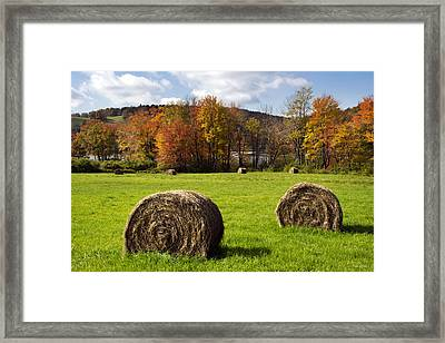 Hay Bales And Fall Colors Framed Print by Christina Rollo