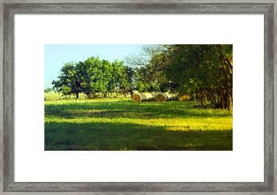 Hay Bales  Framed Print by Ann Powell