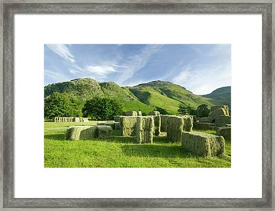 Hay Bales Framed Print by Ashley Cooper